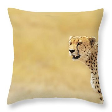 Young Adult Cheetah Banner Throw Pillow