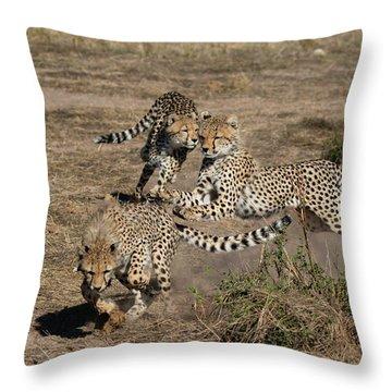 Young Cheetahs Throw Pillow