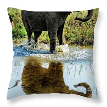 Young Elephant Playing In A Puddle Throw Pillow