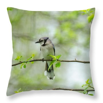 Young Jay Thinking Throw Pillow