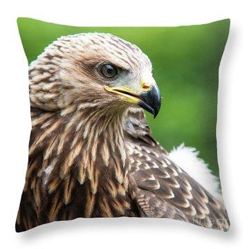 Young Kite Throw Pillow