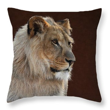 Throw Pillow featuring the photograph Young Male Lion Portrait by Debi Dalio