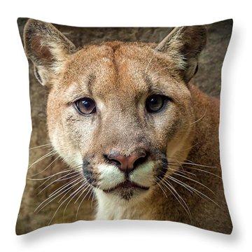 Young Puma Throw Pillow