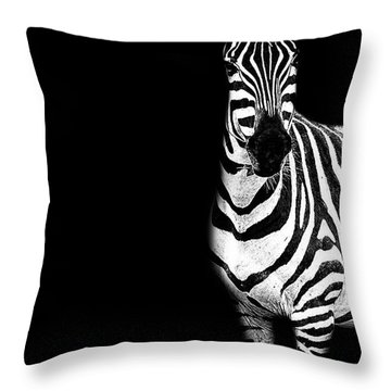 Zebra Drama Throw Pillow