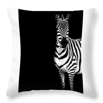 Zebra Drama Throw Pillow