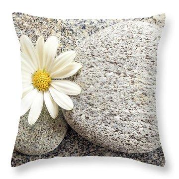 Zen Stone And Daisy Throw Pillow
