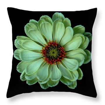 Zinnia Joy Throw Pillow