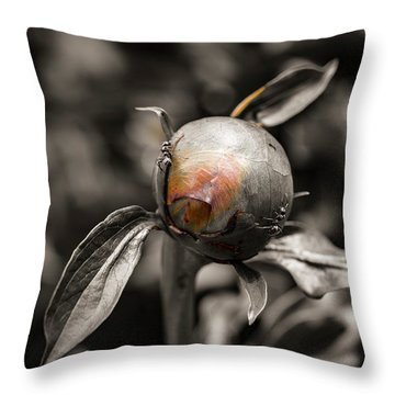 Zombie Flower Attacked By Ants Throw Pillow