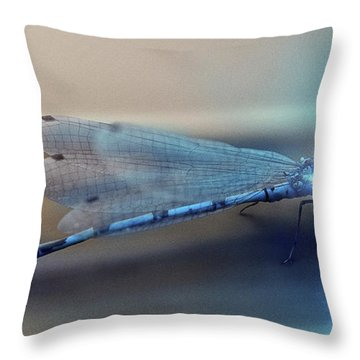 Super Fly - Throw Pillow Product by Matthias Zegveld
