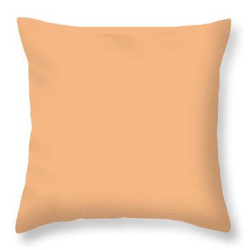Camel Hair Throw Pillows Fine Art America