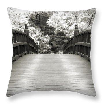 Feng Shui Throw Pillows