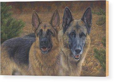 Shepherd Wood Prints