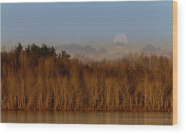 Beaver Pond Wood Prints