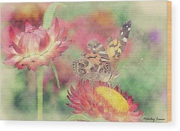 Butterfly Wood Prints
