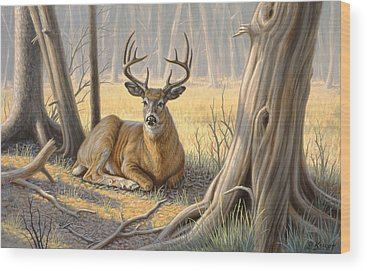 Buck Wood Prints