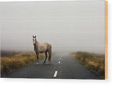 Fog Wood Prints