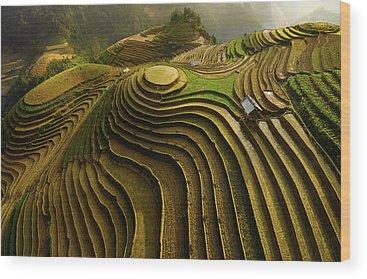 Rice Wood Prints