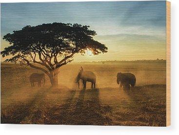 Group Wood Prints