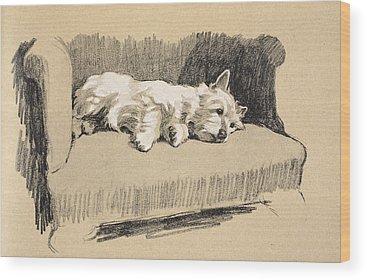 Nap Wood Prints