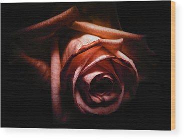 Red Rose Wood Prints