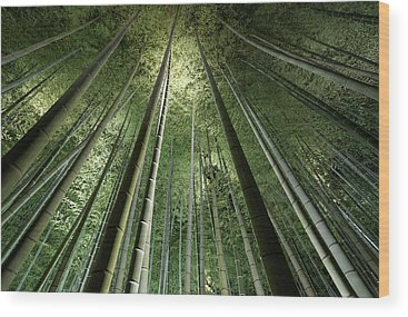 Spa Wood Prints