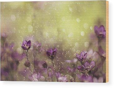Violet Wood Prints