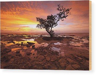 Florida Sunset Wood Prints