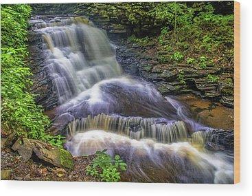 Delaware State Park Wood Prints
