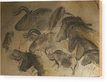 Extinct Wood Prints