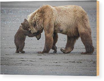 Alaska Wood Prints