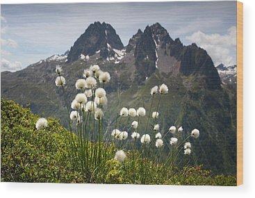 Tour Du Mont Blanc Wood Prints