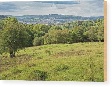 Anthill Wood Prints