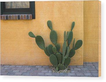 Arizona Cactus Wood Prints