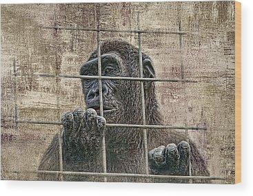 Prisoner Wood Prints