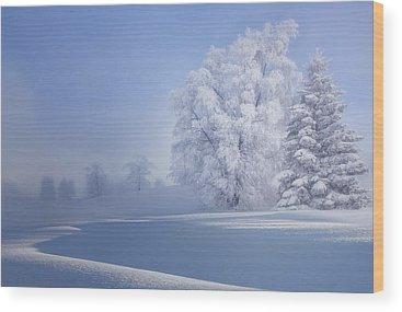 Hoarfrost Wood Prints