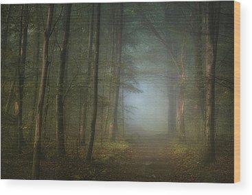Haze Wood Prints