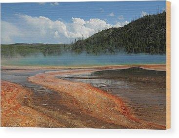 Hydrothermal Wood Prints