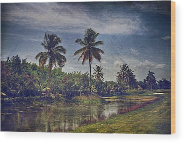 Punta Cana Wood Prints