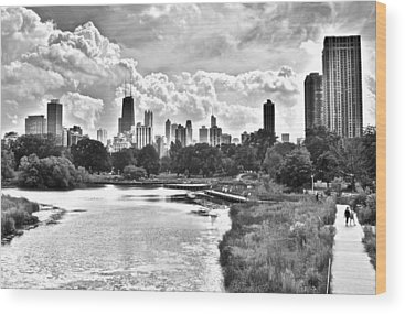 Lincoln Park Zoo Photographs Wood Prints