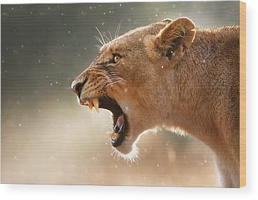 African Wildlife Photographs Wood Prints