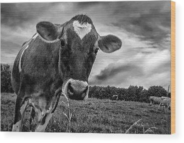 Dairy Wood Prints