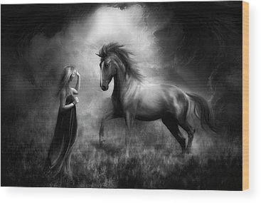 Stallions Wood Prints