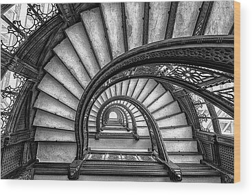Designs Similar to The Rookery by Yimei Sun