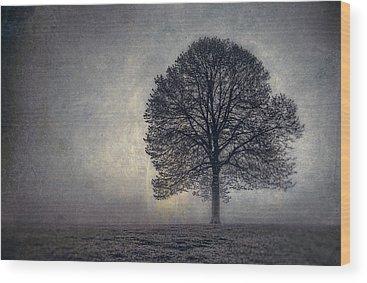 Family Tree Wood Prints