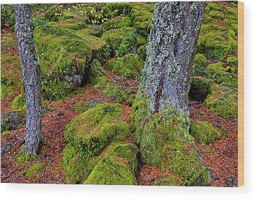 Rogue River Wood Prints