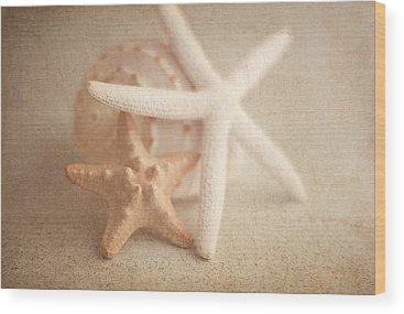 Seashell Wood Prints