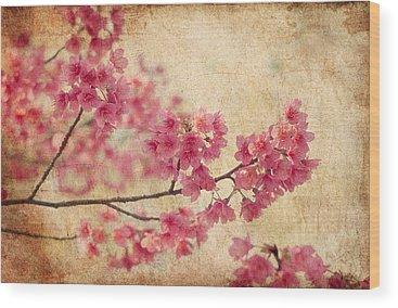 Asia Wood Prints