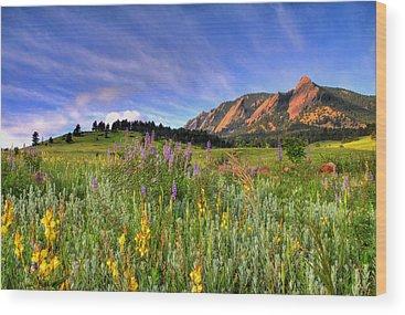 Wildflower Wood Prints