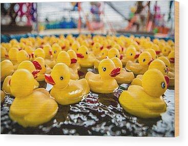 Ducks Wood Prints