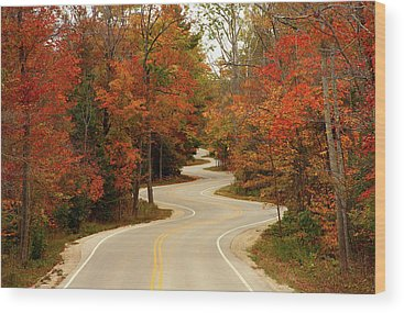 Fall Foliage Wood Prints